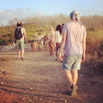 Israel program- walking