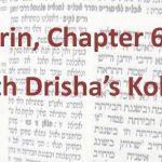 Learn Gemara with Drisha's Kollel