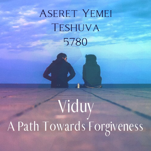 Viduy: A Path Towards Forgiveness