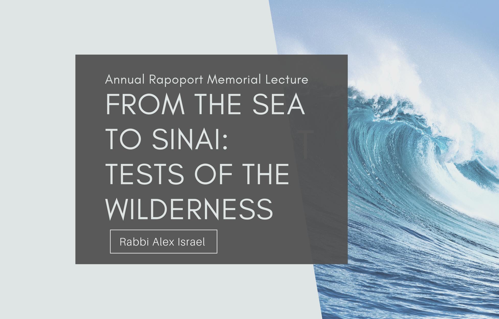 Annual Rapoport Memorial Lecture